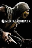 Mortal Kombat X Steam