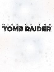 Tomb Raider: Rise of the Tomb Raider (steam)